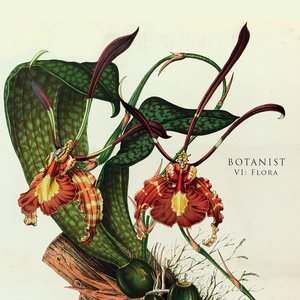 VI: Flora