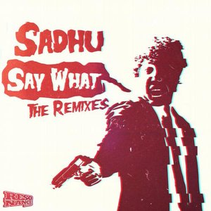 Say What The Remixes