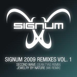 Signum 2009 Remixes Vol. 1