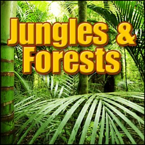 Jungles & Forests: Sound Effects