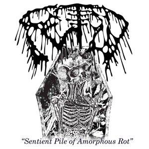 Sentient Pile Of Amorphous Rot