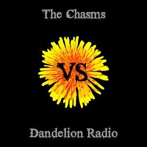 vs Dandelion Radio