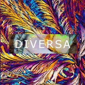 Avatar for Diversa