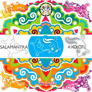 SALAMANTRA - AXOLOTL