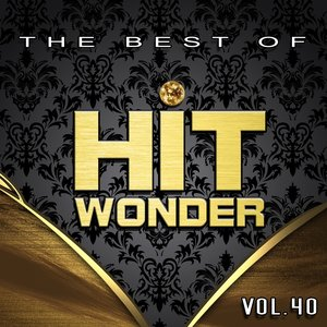 Hit Wonder: The Best Of, Vol. 40