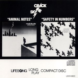Animal Notes / Safety in Numbers