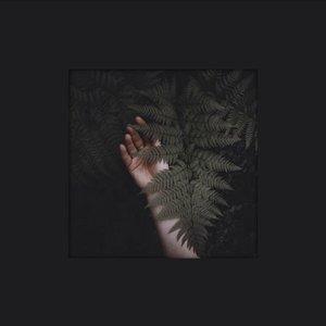 Angel Wings (Tontario Remix)