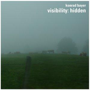 visibility:hidden