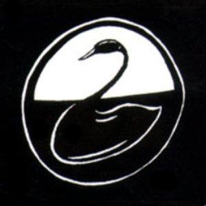 Avatar for Black Swan Network