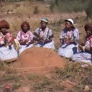 Avatar for Tiyiselani Vomaseve