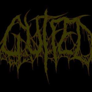 Avatar for Gutfed