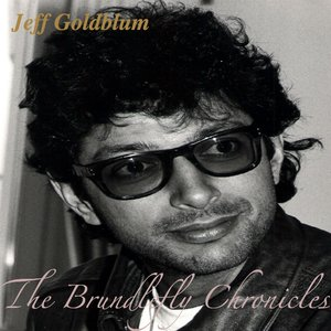 The Brundlefly Chronichles