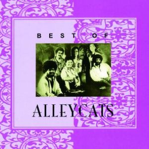 Best Of Alleycats
