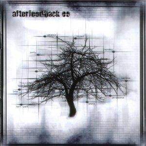 Afterfeedback