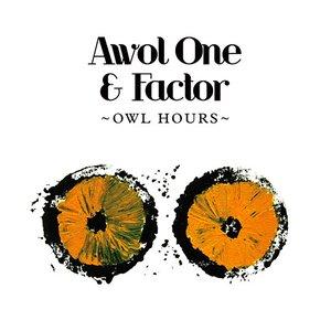 Owl Hours