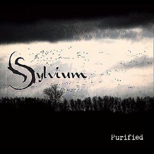 Purified