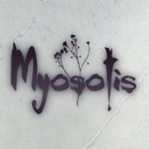 Myosotis のアバター
