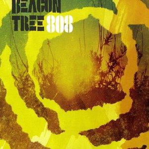 Beacon Tree