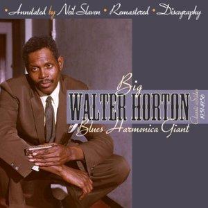 Blues Harmonica Giant