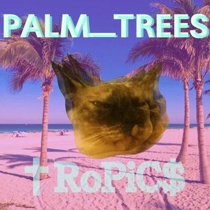 Avatar for palm_trees