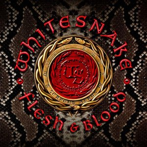 Flesh & Blood (Deluxe Edition) [Explicit]