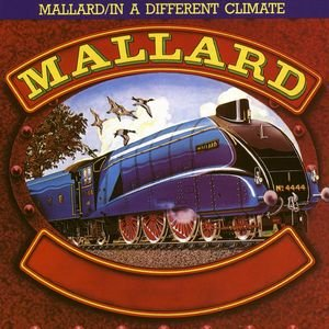 Mallard / In A Different Climate