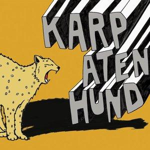 Karpatenhund #3