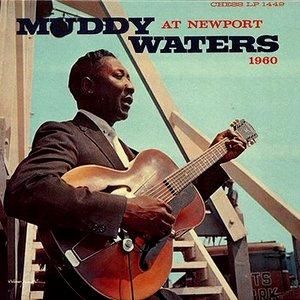 Muddy Waters at Newport