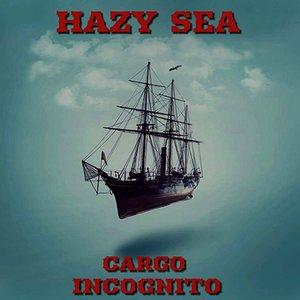 Cargo Incognito