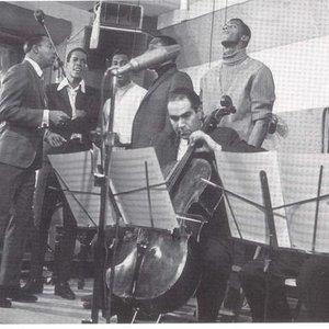 Avatar för San Remo Golden Strings
