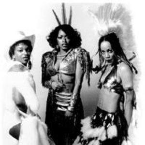 Avatar för The Brides of Funkenstein