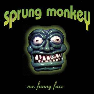 Mr. Funny Face