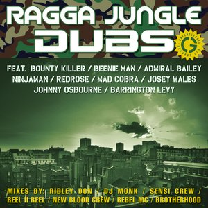 Image for 'Ragga Jungle Dubs'