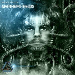 Project Sidologie: Martnetic Fields