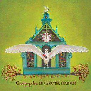 The Clandestine Experiment