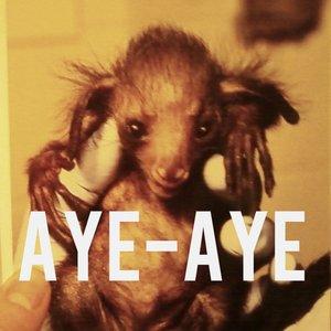 Avatar for Aye-aye