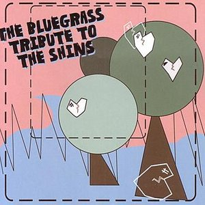 The Bluegrass Tribute to The Shins