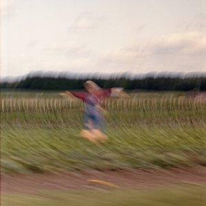 Reveries Of A Solitary Dancer