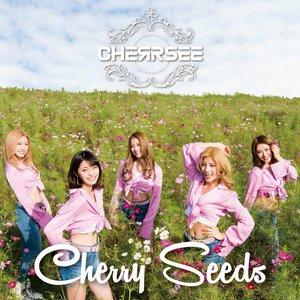Cherry Seeds
