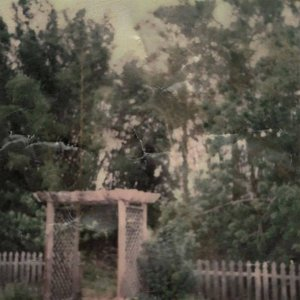 Backyard Cemetery: Revisited