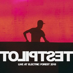 Live At Electric Forest 2018 (DJ Mix)