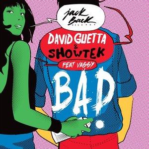Avatar för David Guetta  Showtek