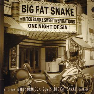 Big Fat Snake - One Night of Sin - Lyrics2You