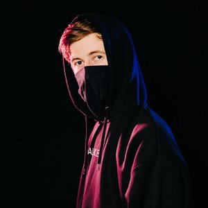Alan Walker için avatar