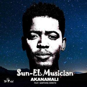 Akanamali (feat. Samthing Soweto)