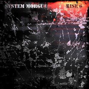 Rise 6