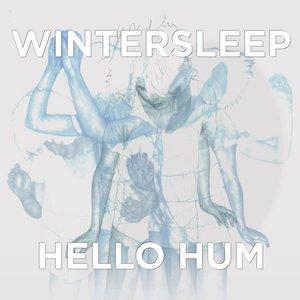 Hello Hum