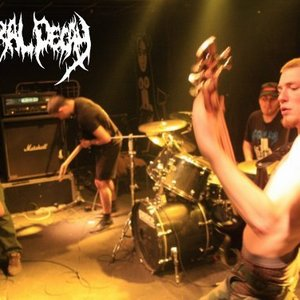Avatar for Guttural Decay
