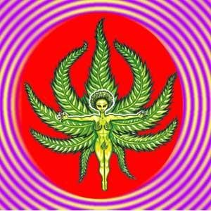 Avatar for Electrofunkadelica