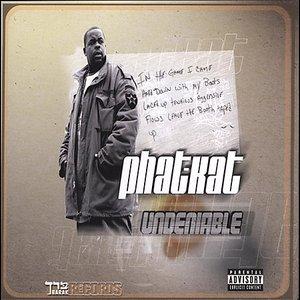 The Undeniable LP